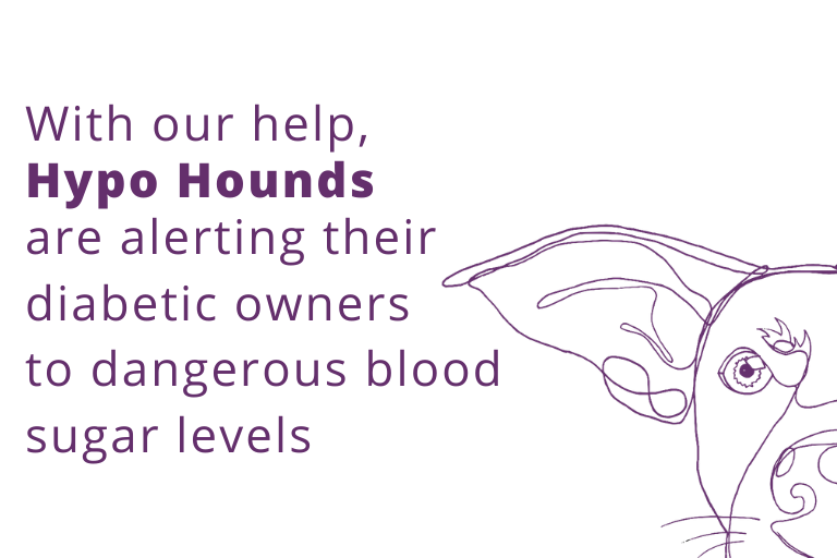 Help for Hypo Hounds
