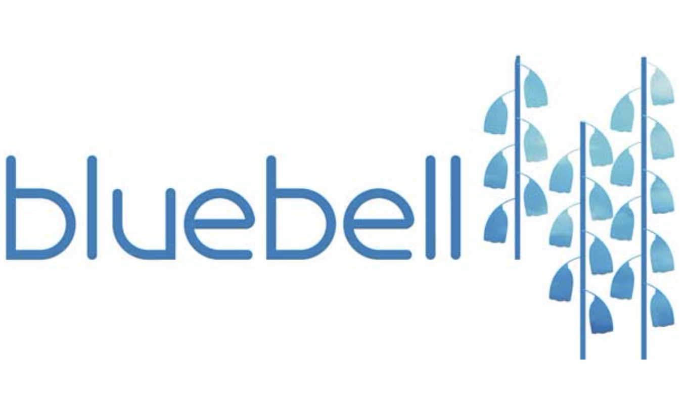 £13,800 for the Bluebell Trust
