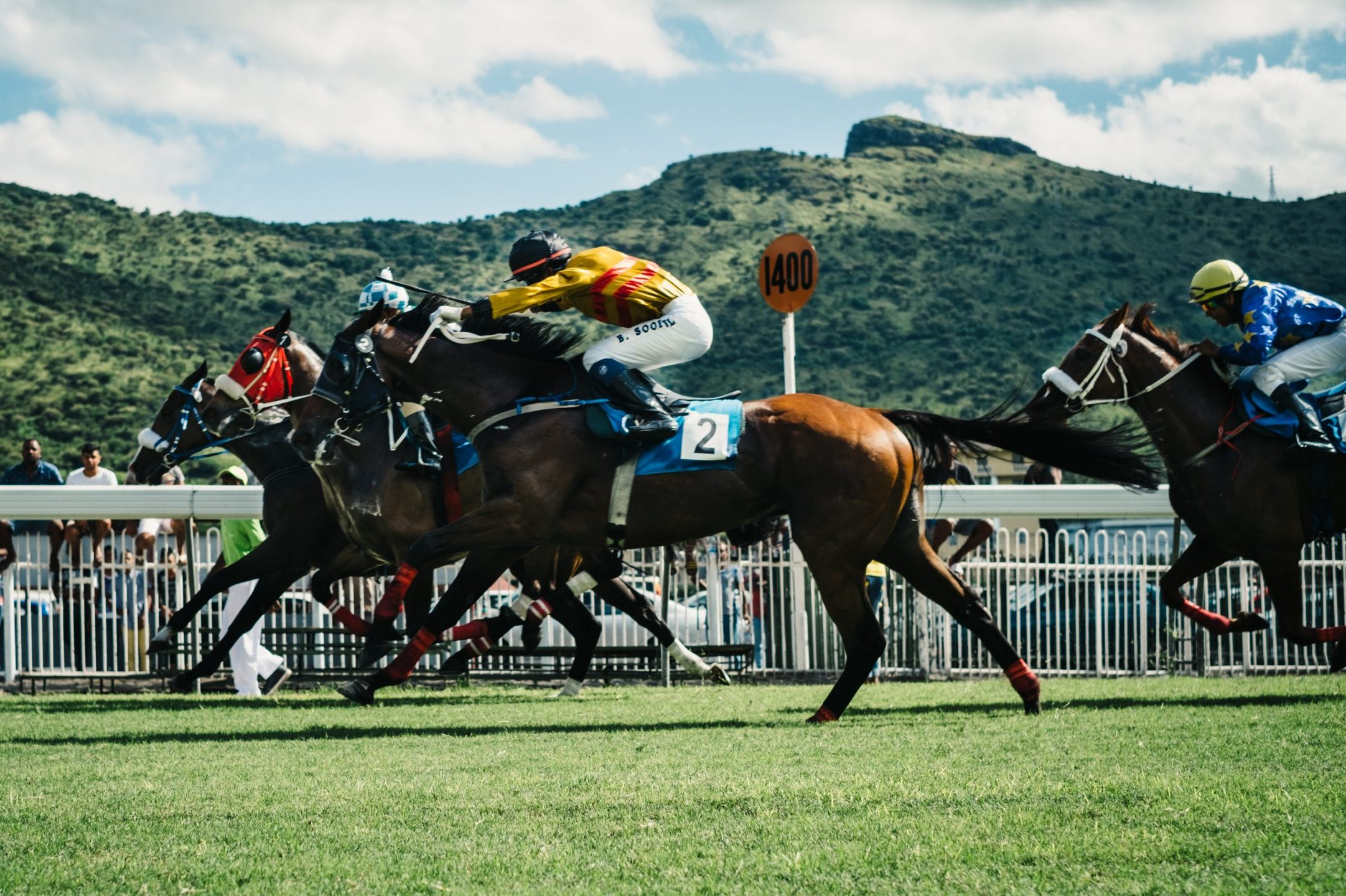 Saddle Up for the Race Night Fundraiser